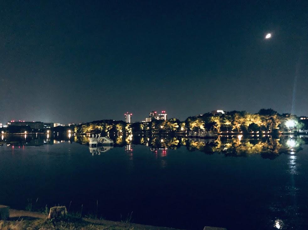 大濠公園夜の散歩