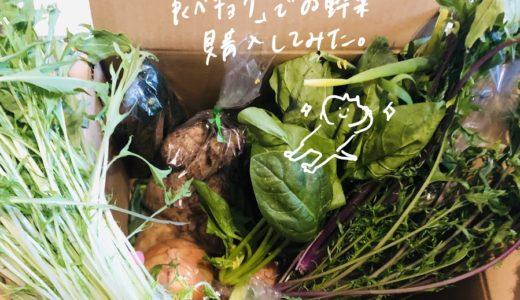 【食べチョク】生産者と直接つながるオンラインマルシェ(通販)で生鮮品を注文してみた